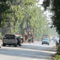 ถนนสาย 12 สุโขทัย - ตาก เจ้าหน้าที่ออป.กำลังลุยตัดไม้สักที่ตำบลคลองสักใหญ่