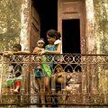 บราซิลถูกเรียกว่า เบลอินเดีย คนส่วนน้อยมีชีวิตแบบคนเบลเยียม ขณะที่คนส่วนใหญ่มีชีวิตแบบคนอินเดียที่ยากจน ที่มาภาพ : poverty